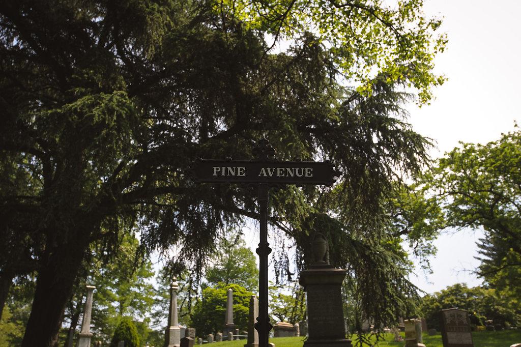 Pine Avenue